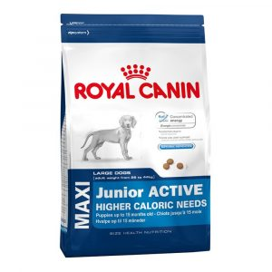 Royal Canin (Роял Канин) Maxi Junior Active